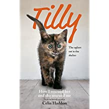 Tilly: The Ugliest Cat