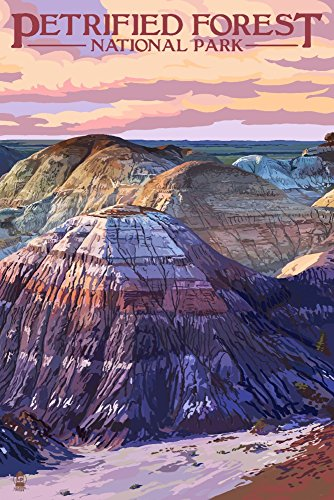 Petrified Forest National Park, Arizona - Chinle Formation (9x12 Art Print, Wall Decor Travel Poster)
