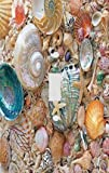 Seashell Beach Decorative Switchplate Cover