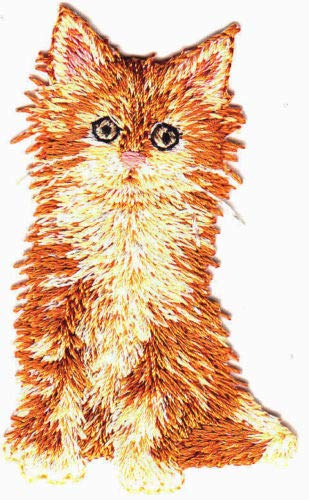 Cat Golden Yellow Kitten Pets Tabby Iron On Embroidered Patch DIY Craft Cotton