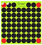 Splatterburst Targets 10 Pack - (620) Self Adhesive 1' Cover-up Patches
