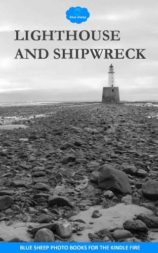 Lighthouse and shipwreck