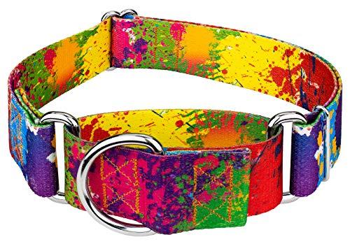 Country Brook Petz - 1 1/2 Inch Paint Splatter Martingale Dog Collar - Medium