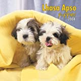 Lhasa Apsos Puppies 2008 Mini Wall Calendar (German, French, Spanish and English Edition)