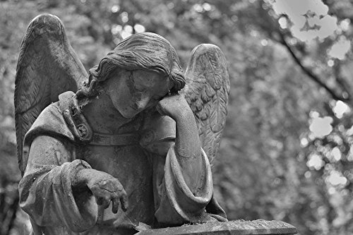 LAMINATED 36x24 Poster: Cemetery Statue Stone Angel Hands Sadness Death Black And White Monument Memory (Cemetery Statue)