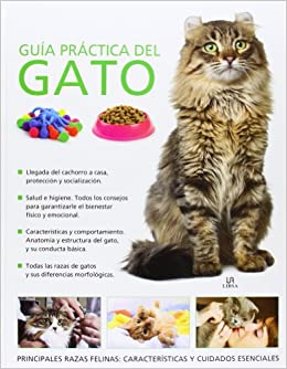Guía práctica del gato / Cat Practical Guide (Spanish Edition): Claire Bessant, Blanca del Cerro: 9788466225762: Amazon.com: Books