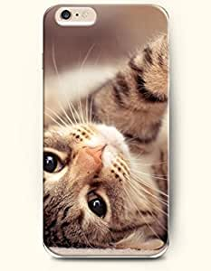 Case Cover For Apple Iphone 4/4S es Cat Lying - Hard Back Plastic Phone Cover Authentic