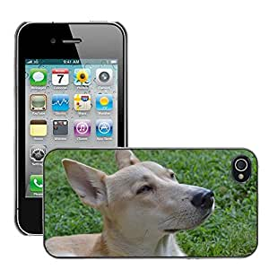 Hot Style Cell Phone PC Hard Case Cover // M00129401 Bitch Pet Pets Loyalty Friend Grace // Apple iPhone 4 4S 4G