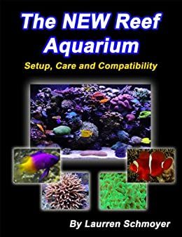 the new reef aquarium setup care and compatibility laurren
