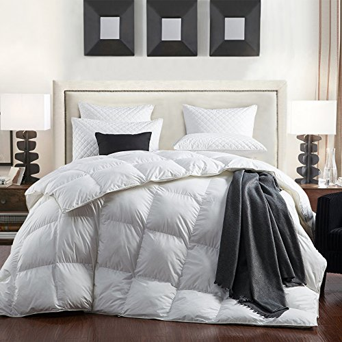 C&W Luxurious Goose Down Comforter,Queen Size,1200 Thread Count 100% Egyptian Cotton 750FP 50 Oz Fill Weight, White Color