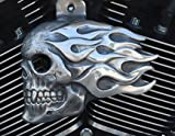 Flaming Skull Horn Cover in Aged Aluminum Finish