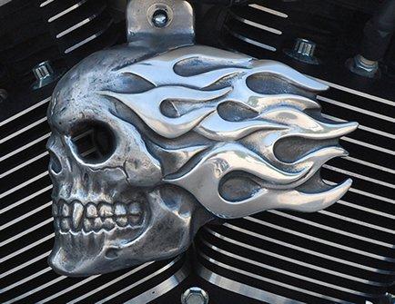(Flaming Skull Horn Cover in Aged Aluminum Finish)