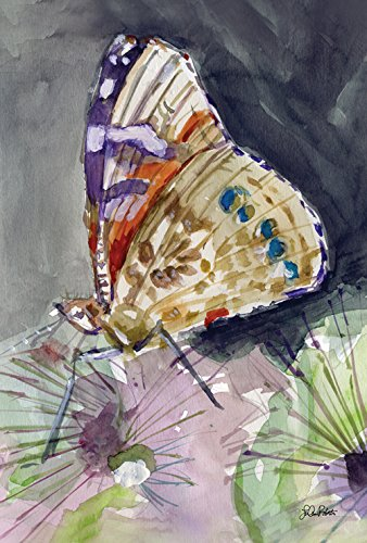 (Toland Home Garden Watercolor Butterfly 28 x 40 Inch Decorative Spring Painted Insect House Flag)