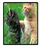 Cat Family Soft Fleece Throw Blanket 50