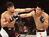 Keita Nakamura vs. Jingliang Li UFC Fight Night 75