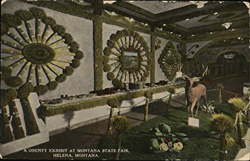 A County Exhibit at Montana State Fair Helena Original Vintage Postcard