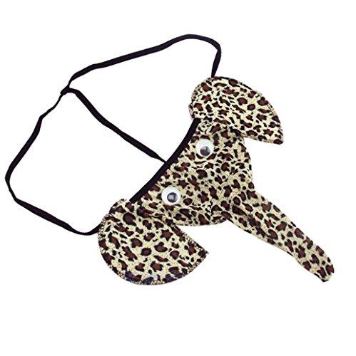 Goddessvan Men's Elephant Bulge Pouch Underpants Elastic T Back Lingerie Thong Erotic Underwear (Free Size, Brown)