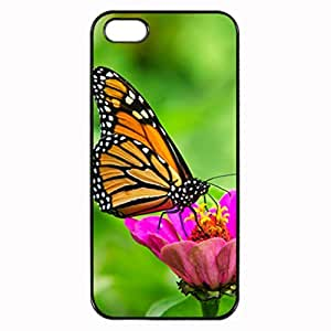 iPhone 5 5S Case - Monarch Butterfly Patterned Protective Skin Hard Case Cover for Apple iPhone 5 / 5S - Haxlly Designs Case