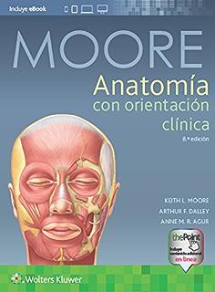Neuroanatomia De Snell 7 Edicion Epub