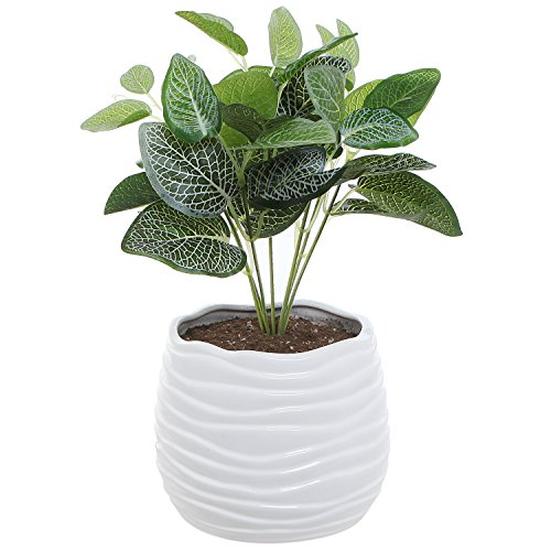 5.5 Inch White Ceramic Wavy Design Plant Flower Planter Container Pot / Decorative Centerpiece Bowl Vase (Pots For Centerpieces)