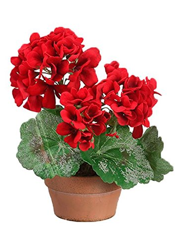 Silk Red Geranium Pre-Made Plant Arrangement9