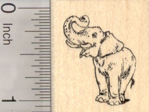 Asian Elephant Rubber Stamp, Endangered Wildlife, India, Sumatra, Asia, Small