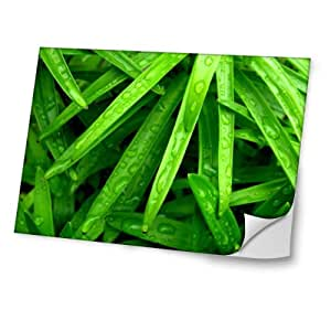 Naturaleza 10001, Diseño Mejor Pegatina de Vinilo Protector con Efecto Cuero Extraíble Adhesivo Sticker Skin Decal Decorativa Tapa con Diseño Colorido para Portátil 19''.