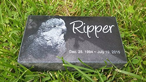 Personalised Pet Stone Memorial Marker Granite Marker Dog Cat Horse Bird Human 4'' X 7'' X 2'' Custom Design Personalizd Person Family Grave
