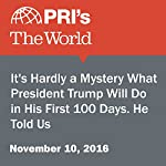 It's Hardly a Mystery What President Trump Will Do in His First 100 Days. He Told Us   Matthew Bell