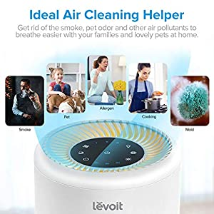 LEVOIT Air Purifier for Home Allergies and Pets, H13 True HEPA Air Purifier Filter, Quiet Filtration System in Bedroom, Removes Smoke Odor Dust Mold, Night Light & Timer, Vista 200