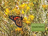 img - for Wings in the Light: Wild Butterflies in North America book / textbook / text book