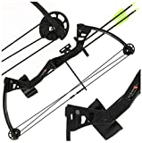 NEW ANGLO ARMS Black Kita 25lb Compound Bow Set with 2 Arrows and Quiver