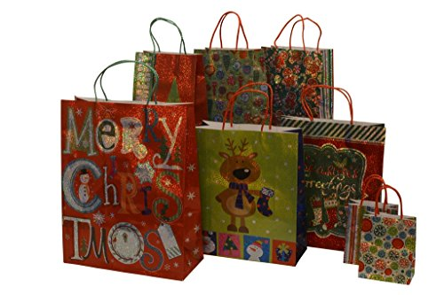 Christmas gift bags, hologram design, assorted sizes, 8 piece set