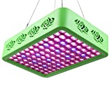 Roleadro Reflector-Series 300W LED Grow Light Full Spectrum Grow Lamp with Double Chips for Hydroponic Indoor Plants Veg and Flower