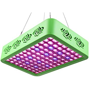 Roleadro Full Spectrum LED Grow Light Reflector-Series 300W Double Chips Grow Lamp for Hydroponic Indoor Plants Veg and Flower