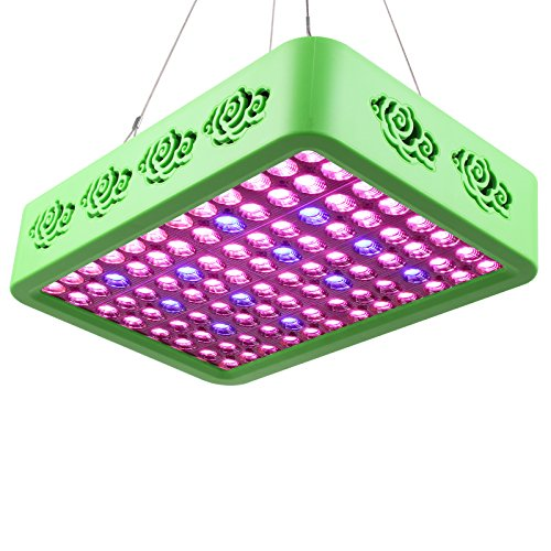 Roleadro Full Spectrum LED Grow Light Reflector-Series 300W Double Chips Grow Lamp for Hydroponic Indoor Plants Veg and Flower by Roleadro