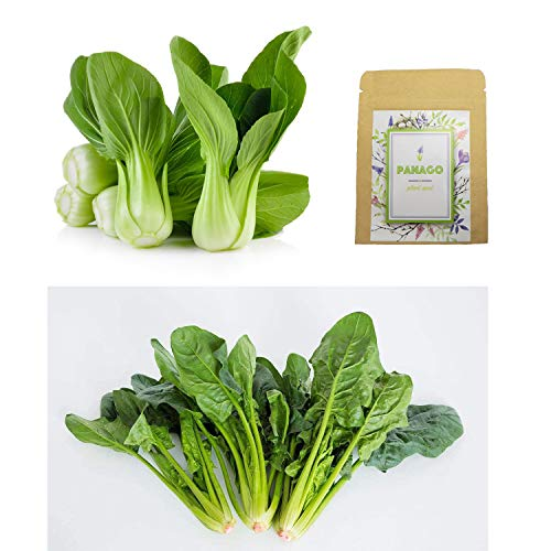 1100+ Baby Bok Choy Seeds & 500+ Spinach Seeds for Planting, Non-GMO Organic Heirloom Delicious Vegetable Seeds