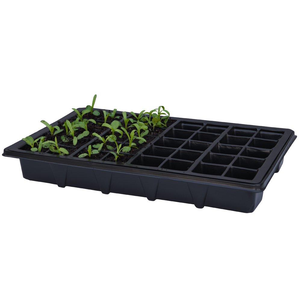 Tray+Clear Lid 3 x Full Size Non Electric Propagators