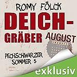 Deichgräber. August (Pechschwarzer Sommer 5) | Romy Fölck