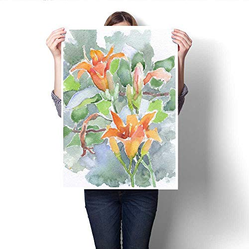 (Anshesix Canvas Painting Sticker Orange Flowers Daylily Watercolor Hand Painted Sketch Print On Canvas for Wall Decor)