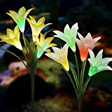 Solar Lights Outdoor - New Upgraded Solar Garden Lights, Multi-Color Changing Lily Solar Flower Lights for Patio,Yard Decoration, Bigger Flower and Wider Solar Panel (2 Pack,Yellow and White)