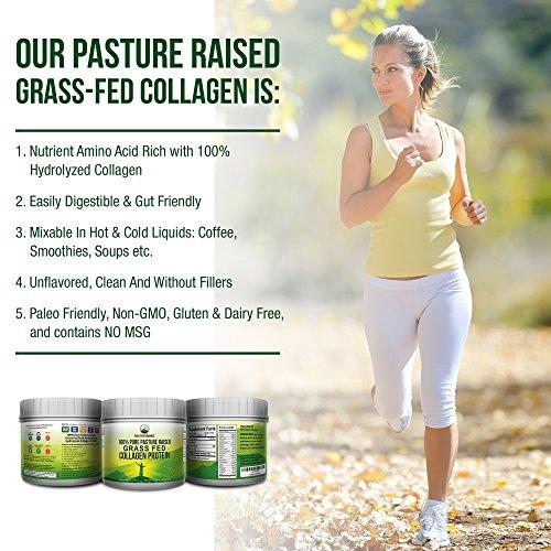 Pure Pasture Raised Grass Fed Hydrolyzed Collagen Protein by Peak Performance. Paleo Friendly, Gluten & Dairy Free Collagen Peptides (Unflavored Collagen) by Peak Performance Coffee (Image #8)