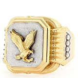 14k Two Tone Gold Eagle Rectangular Fancy Mens Ring