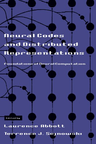 Neural Codes and Distributed Representations: Foundations of Neural Computation (Computational Neuroscience)
