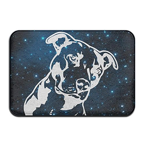 dan ding Soft Non-Slip Pitbull Platinum Style Bath Mat Coral Fleece Area Rug Door Mat Entrance Rug Floor Mats