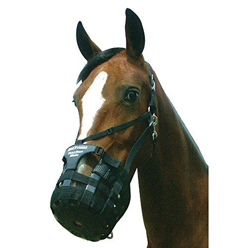 Best Friend Have a Heart Horse Grazing Muzzle Horse Best Friend Grazing Muzzle