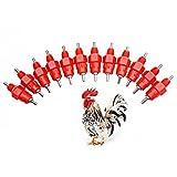 Automatic Chicken Water Nipple Drinker Feeders