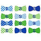 Tiny Ideas First Year Monthly Milestone Bowtie Photo Sharing Baby Belly Stickers, 1-12 Months, Blue