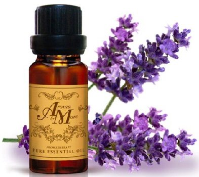 Nutmeg Gravel (Lavender H.A. Pure Essential Oil 100% (Bulgalia) (Lavandula angustifolia) (Floral Scent) 30 ml (1 Fl Oz) Premium Grade-Beauty)