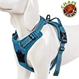 Chai's Choice Best Outdoor Adventure Dog Harness (Large, Teal Blue)